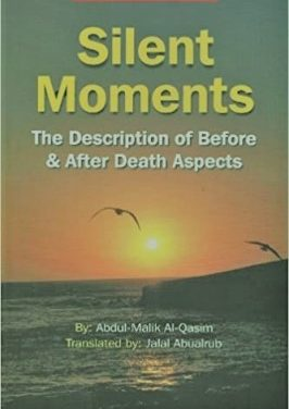 Silent Moments pdf download