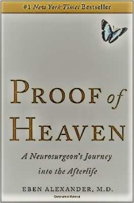 Proof of Heaven pdf download